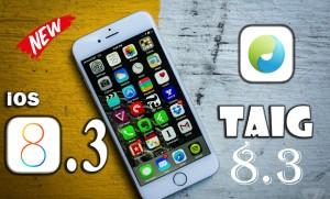 TaiG 8.3