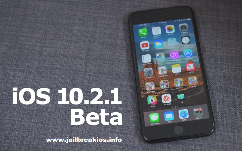 iOS 10.2.1 Beta 2 Download
